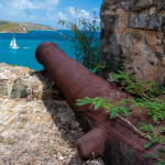 Cannon over Coral Bay
